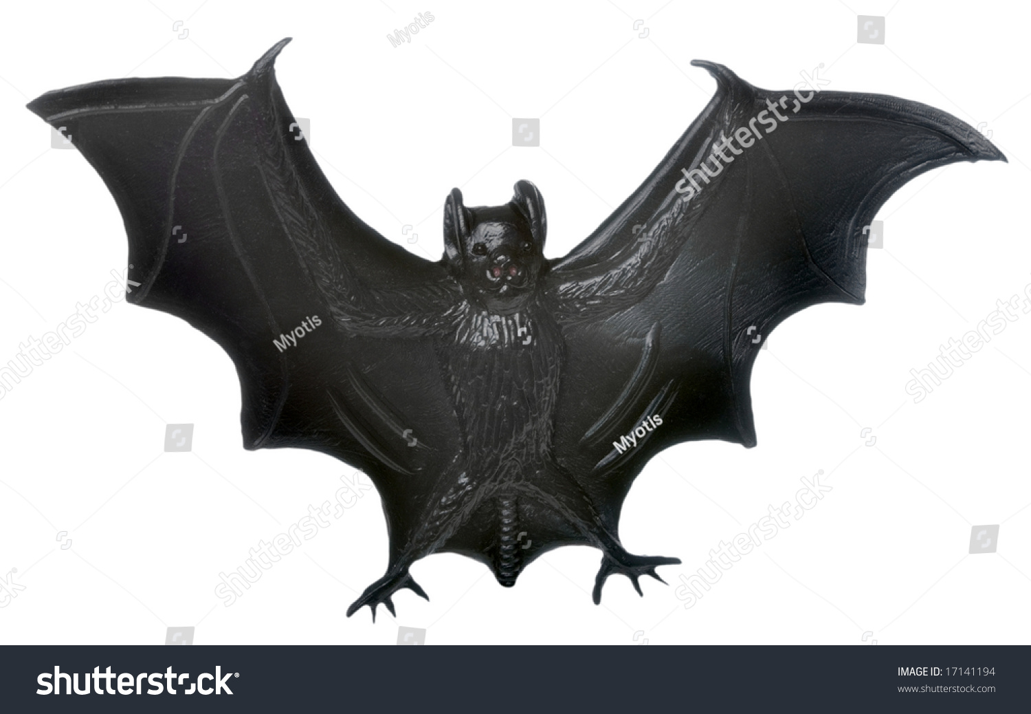 isolated plastic bat halloween decoration