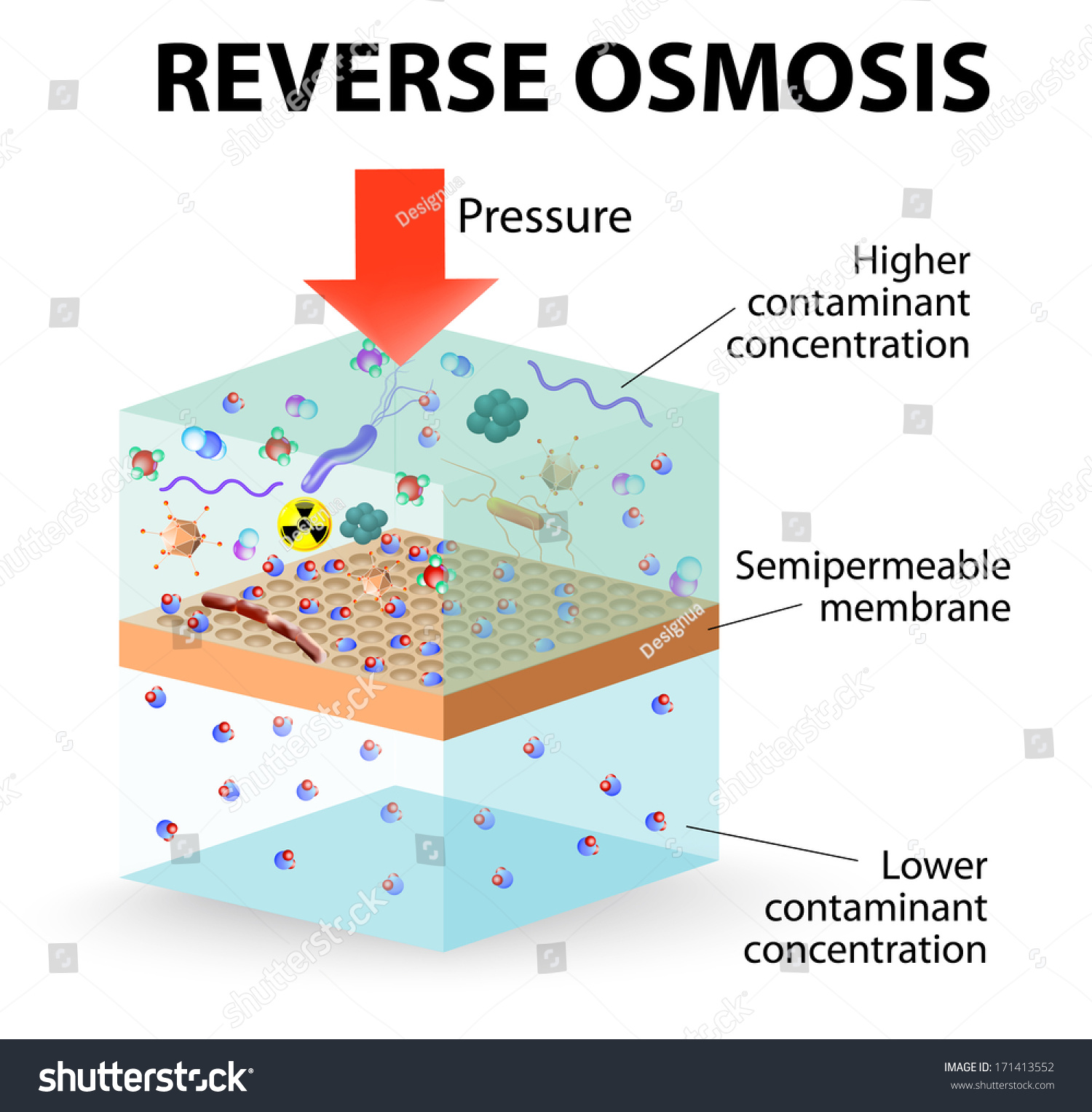 Reverse Osmosis Use Membrane Act Like Stock Vector