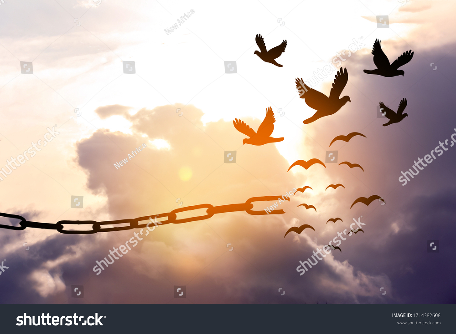 Freedom concept. Silhouettes of broken chain and birds flying in sky #1714382608