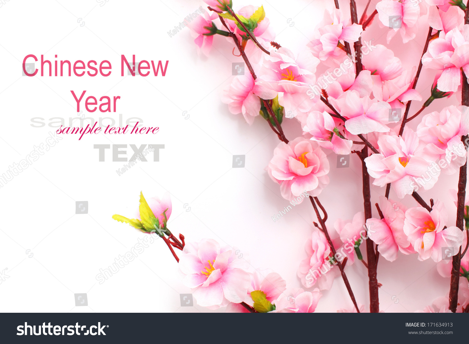 plum flowers blossom on white background good for chinese new year use ez canvas