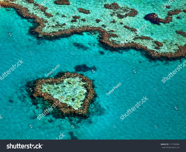 Great Barrier Reef Australia #171704984