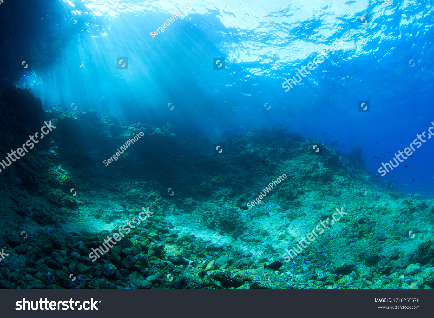 Underwater scenery with rocks and sun rays. Image taken scuba diving in Indonesia #1718255578