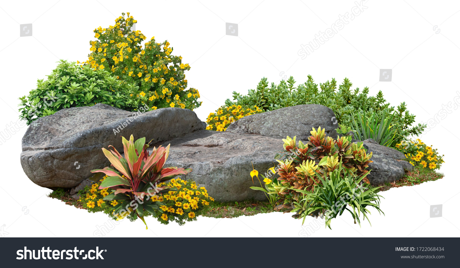 Cutout rock surrounded by flowers. Garden design isolated on white background. Flowering shrub and green plants for landscaping. Decorative shrub and flower bed. High qualit #1722068434