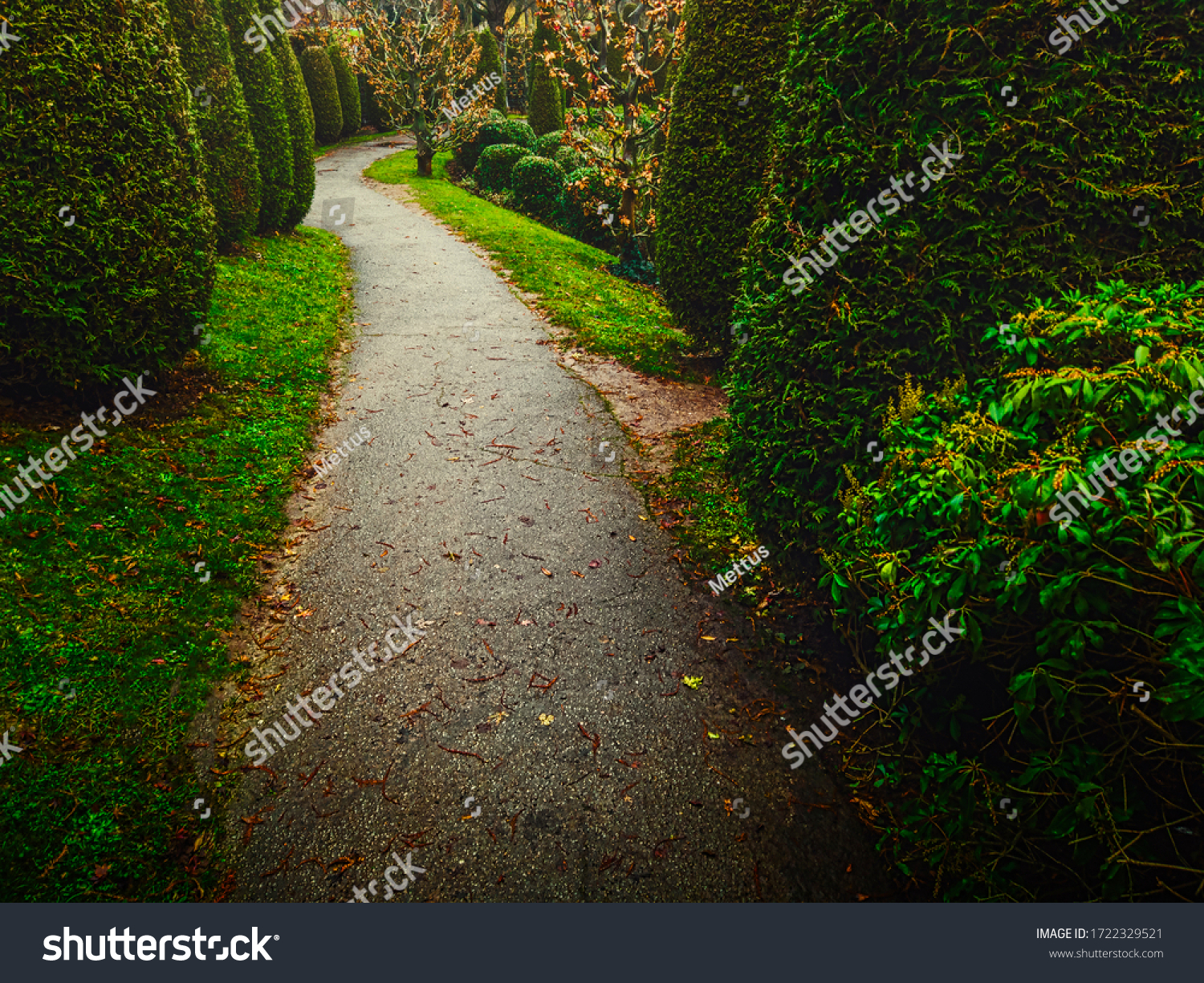 stock-photo-the-path-in-the-garden-is-co