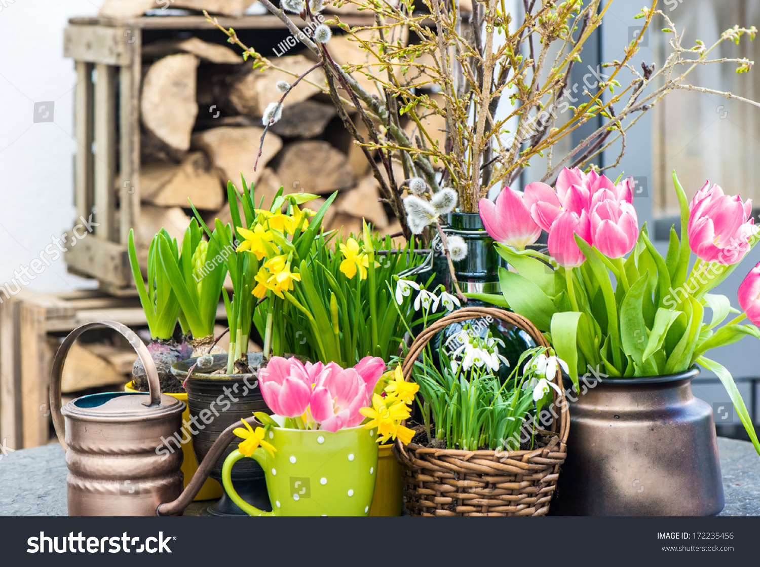 Easter Decoration Spring Flowers Tulips Snowdrops Stock Photo Edit