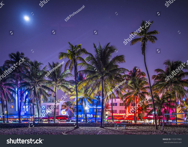 Neon Lights Palm Beach Fl