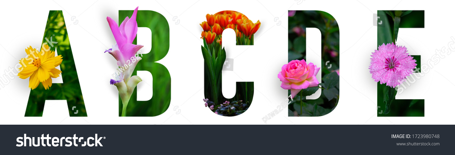 Floral letters. The letters A, B, C, D, E are made from colorful flower photos. A collection of wonderful flora letters for unique spring decorations and various creation ideas. clipping path #1723980748