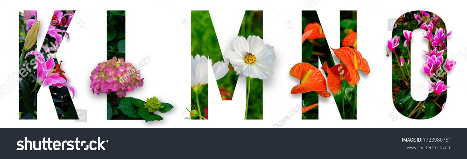 Floral letters. The letters K, L, M, N, O are made from colorful flower photos. A collection of wonderful flora letters for unique spring decorations and various creation ideas. clipping path #1723980751