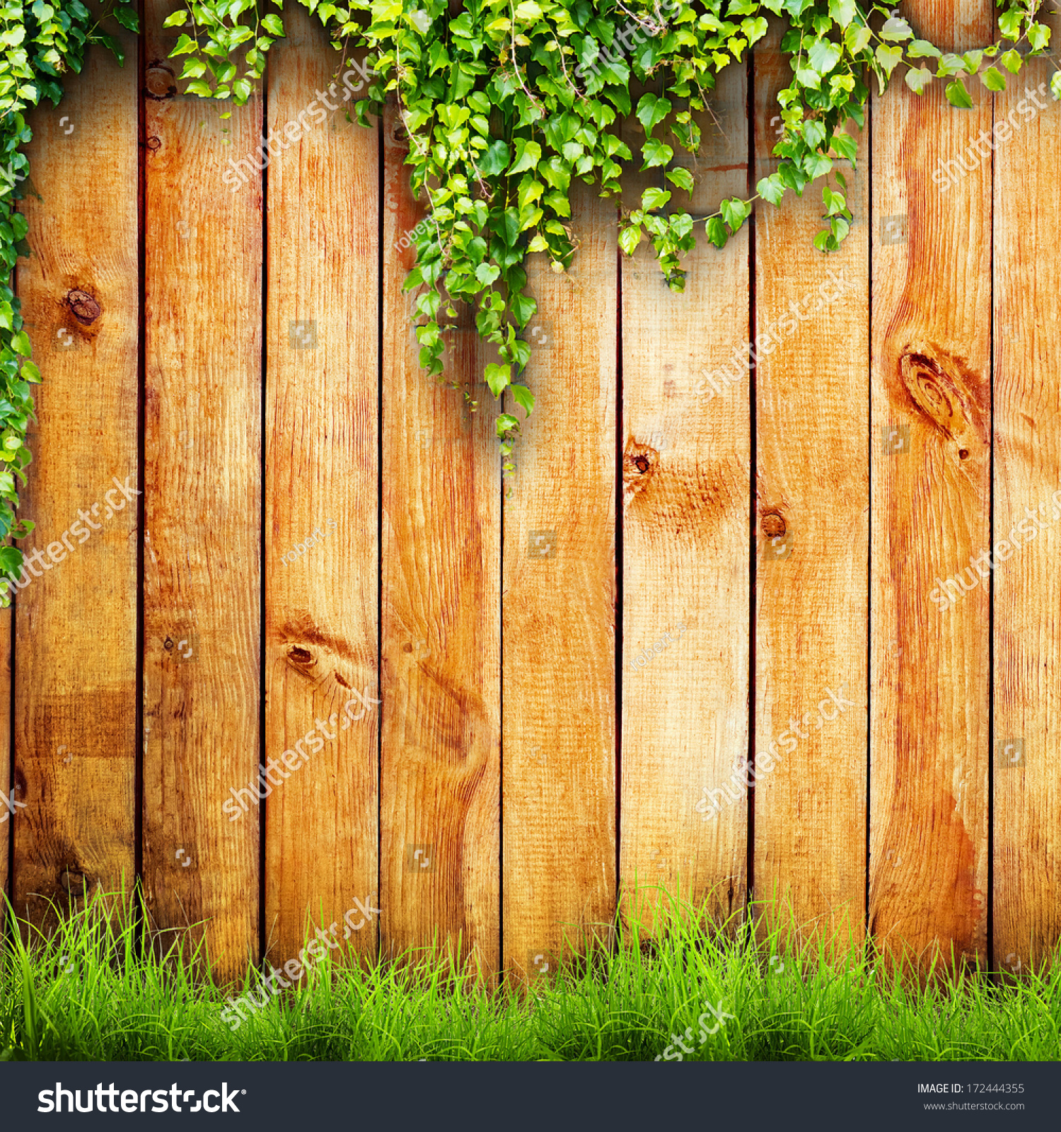 Spring Green Leaves And Flowers Background With Plants: Fresh Spring Green Grass And Leaf Plant… Stock Photo