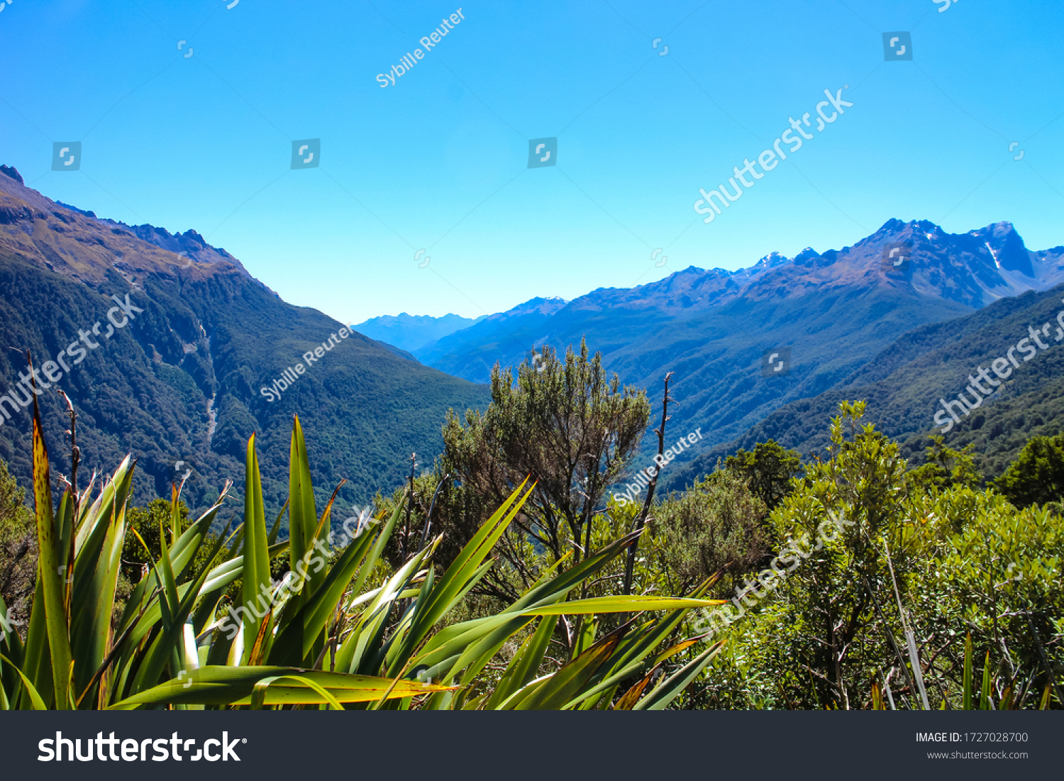 Stunning view of Hollyford Valley from the Key Summit Track section of Routeburn Track, one of the Great Tracks on New Zealand's South Island in Fiordland National Park.