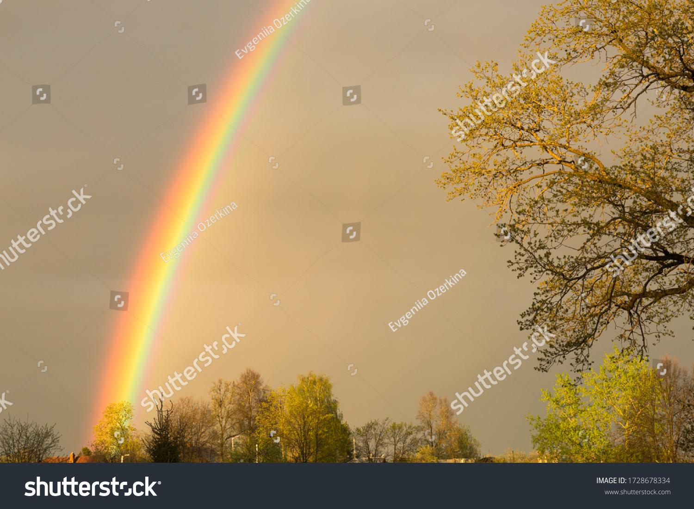 stock-photo-bright-rainbow-close-up-is-o
