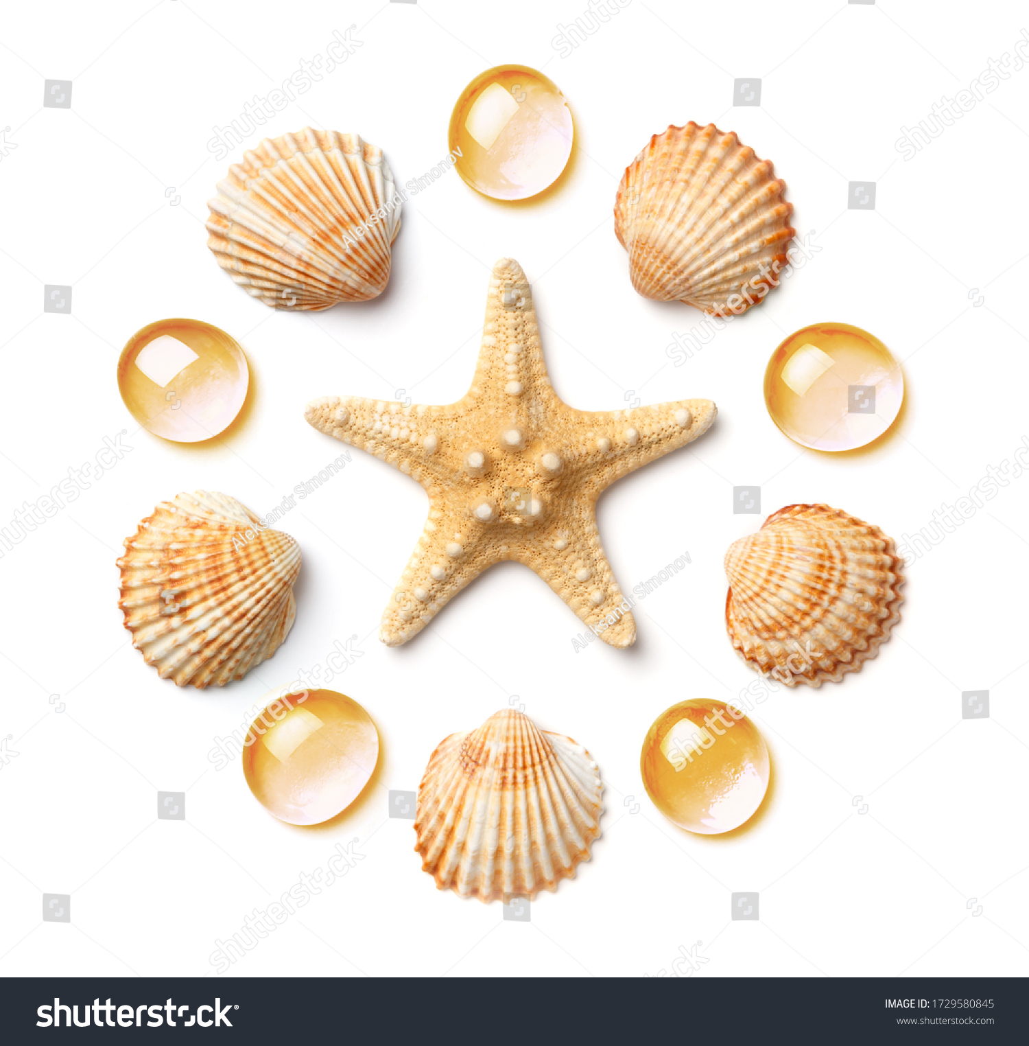 Pattern in the form of a circle of sea shells and starfish, isolated on a white background. Flat lay, top view #1729580845