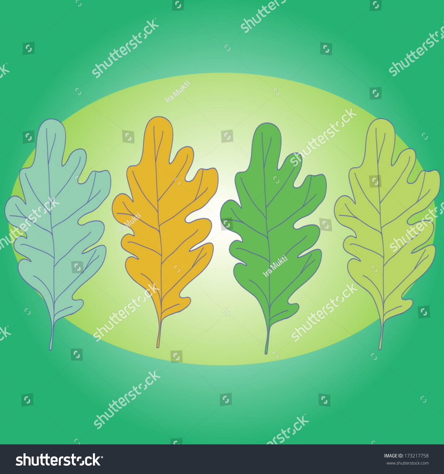 Row Four Oak Leaves On Green Stock Vector Royalty Free 173217758