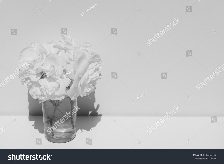 stock-photo-mini-bouquet-of-cream-roses-