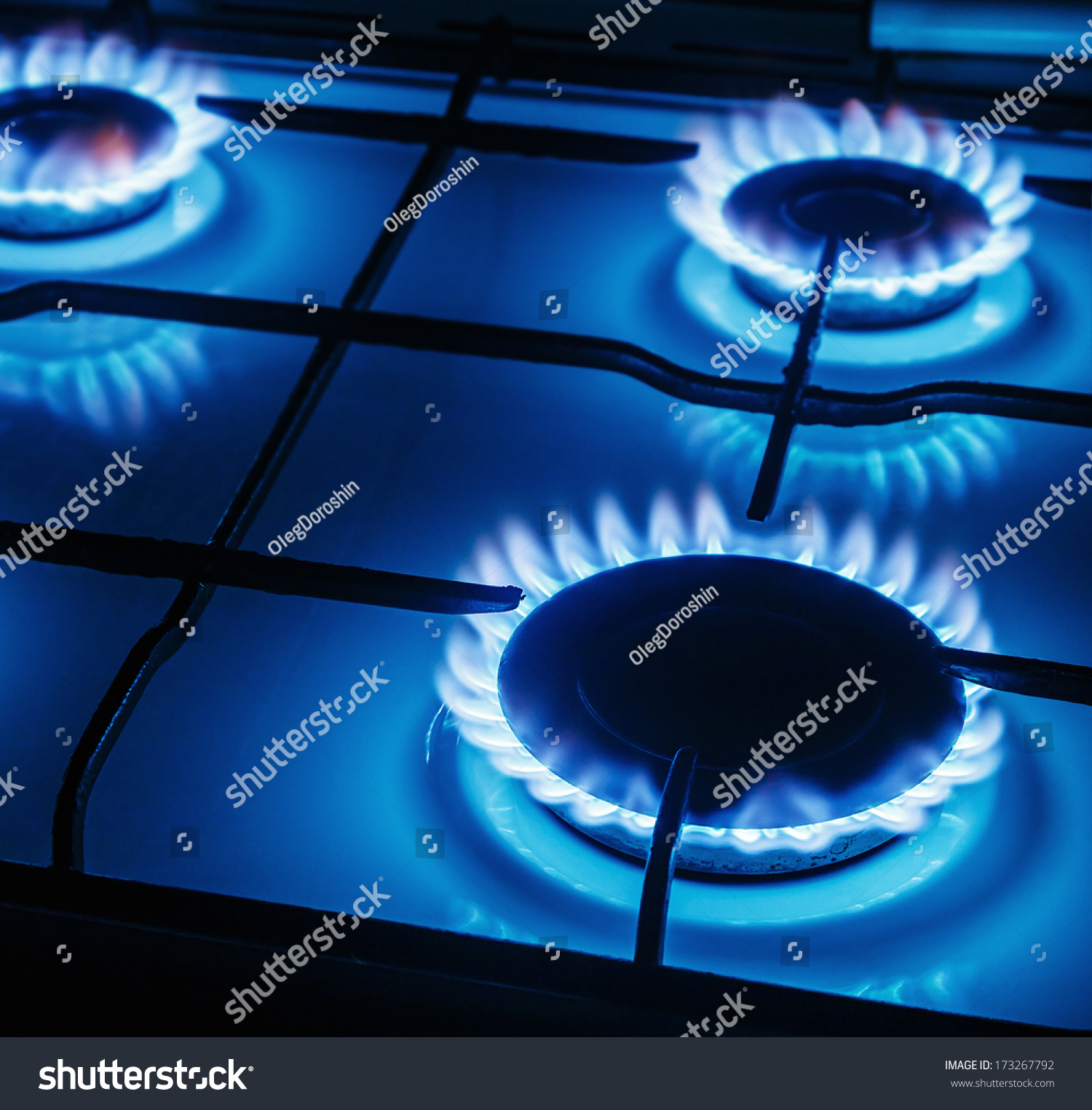 Blue Flame Kitchen: Blue Flames Of Gas Burning From A Kitchen Gas Stove. Focus