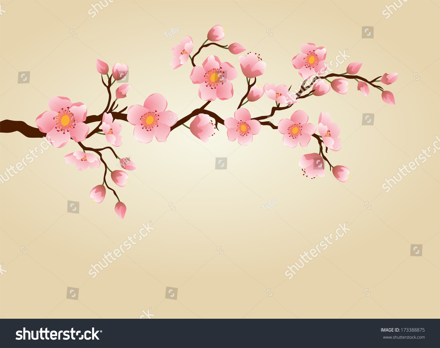 Cherry Blossom Branch Stock Illustration 173388875