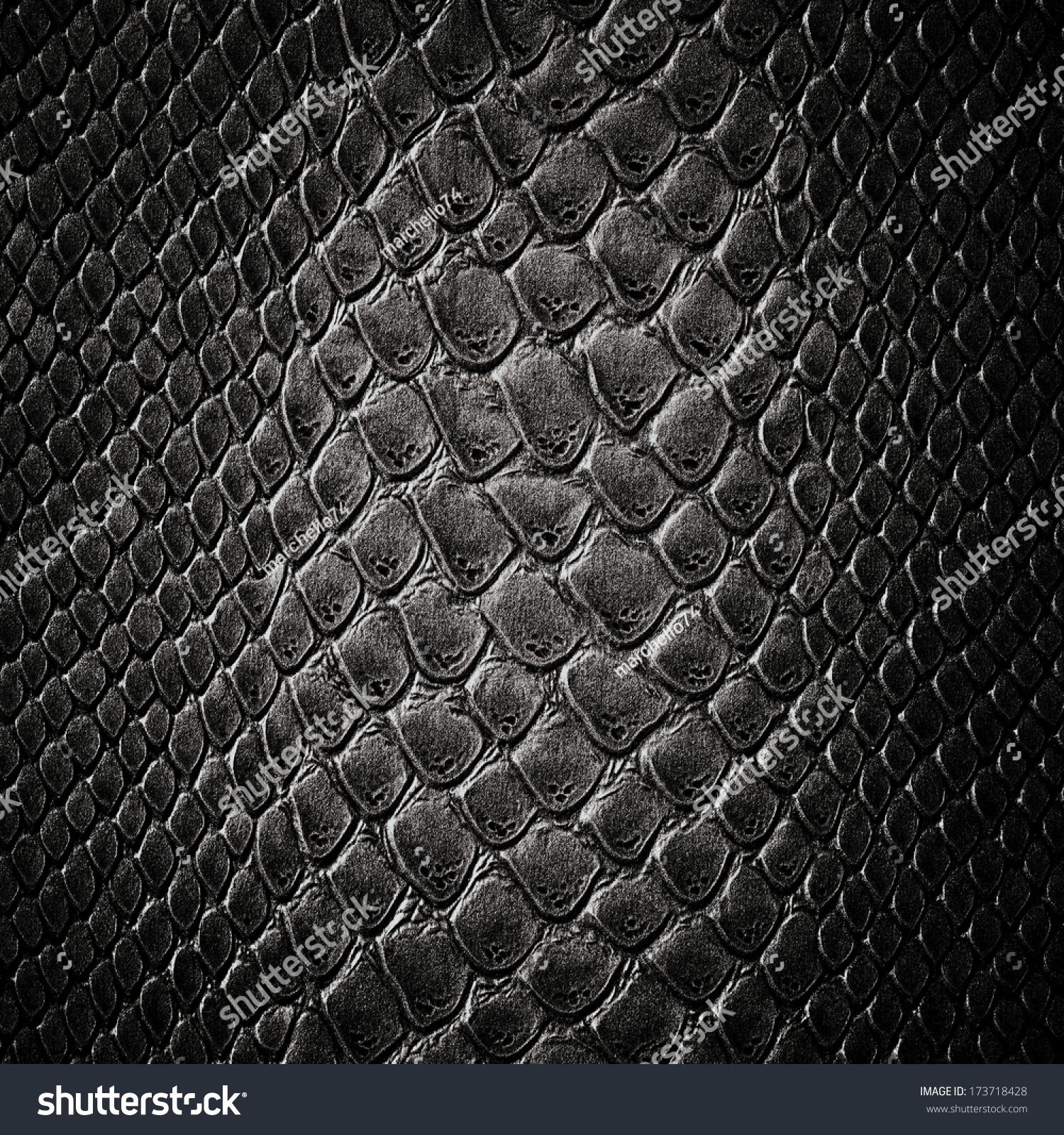 Snake Black Skin Leather Texture Stock Photo 173718428 : Shutterstock