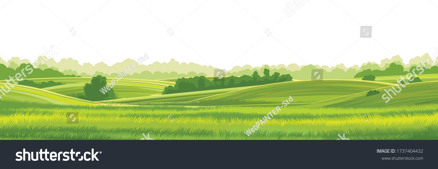 Rural hills  landscape vector background on white. Pasture grass for cows. Meadows and trees. Horizon. #1737404432