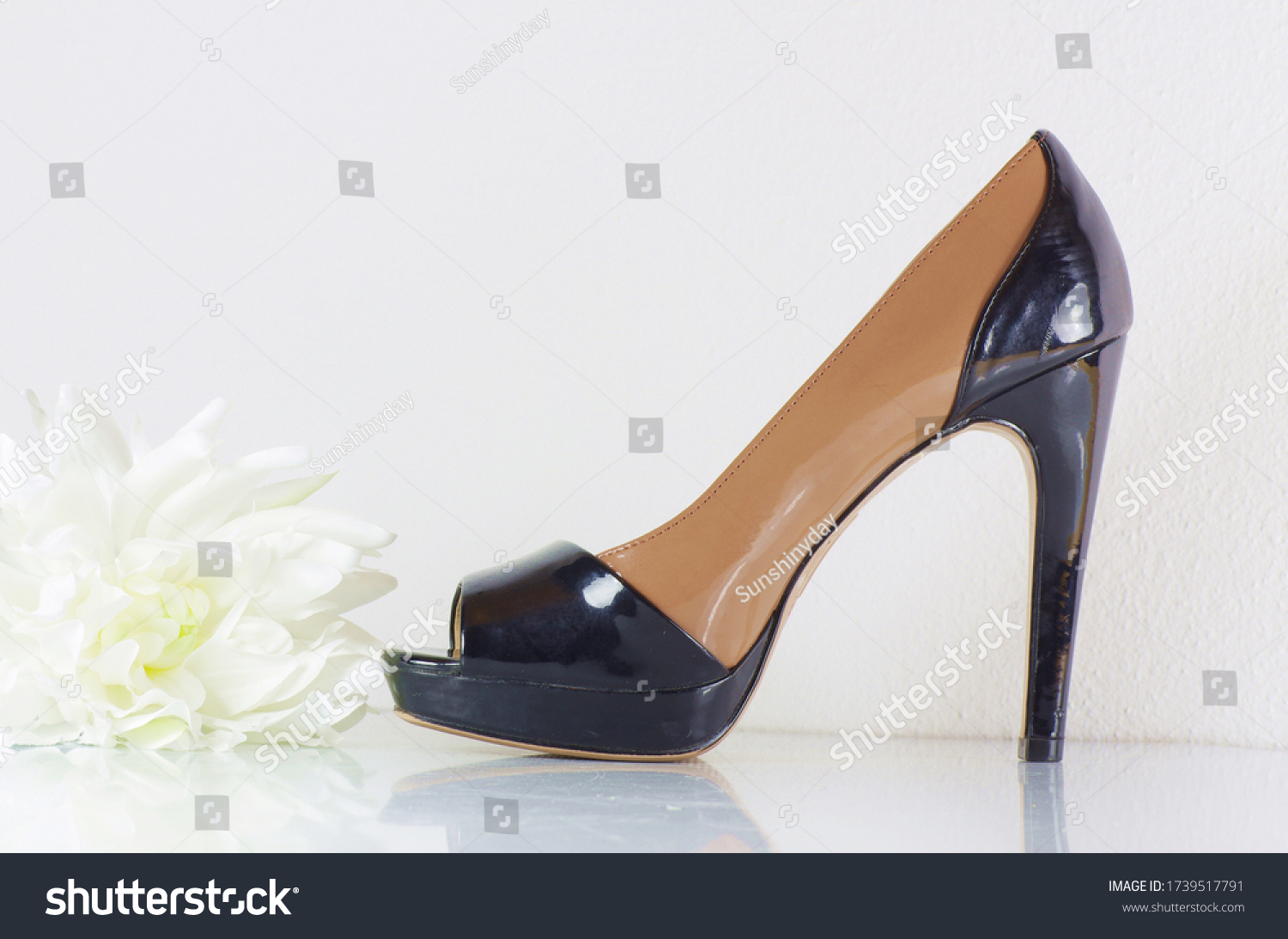 Black and beige high heels with white flower studio