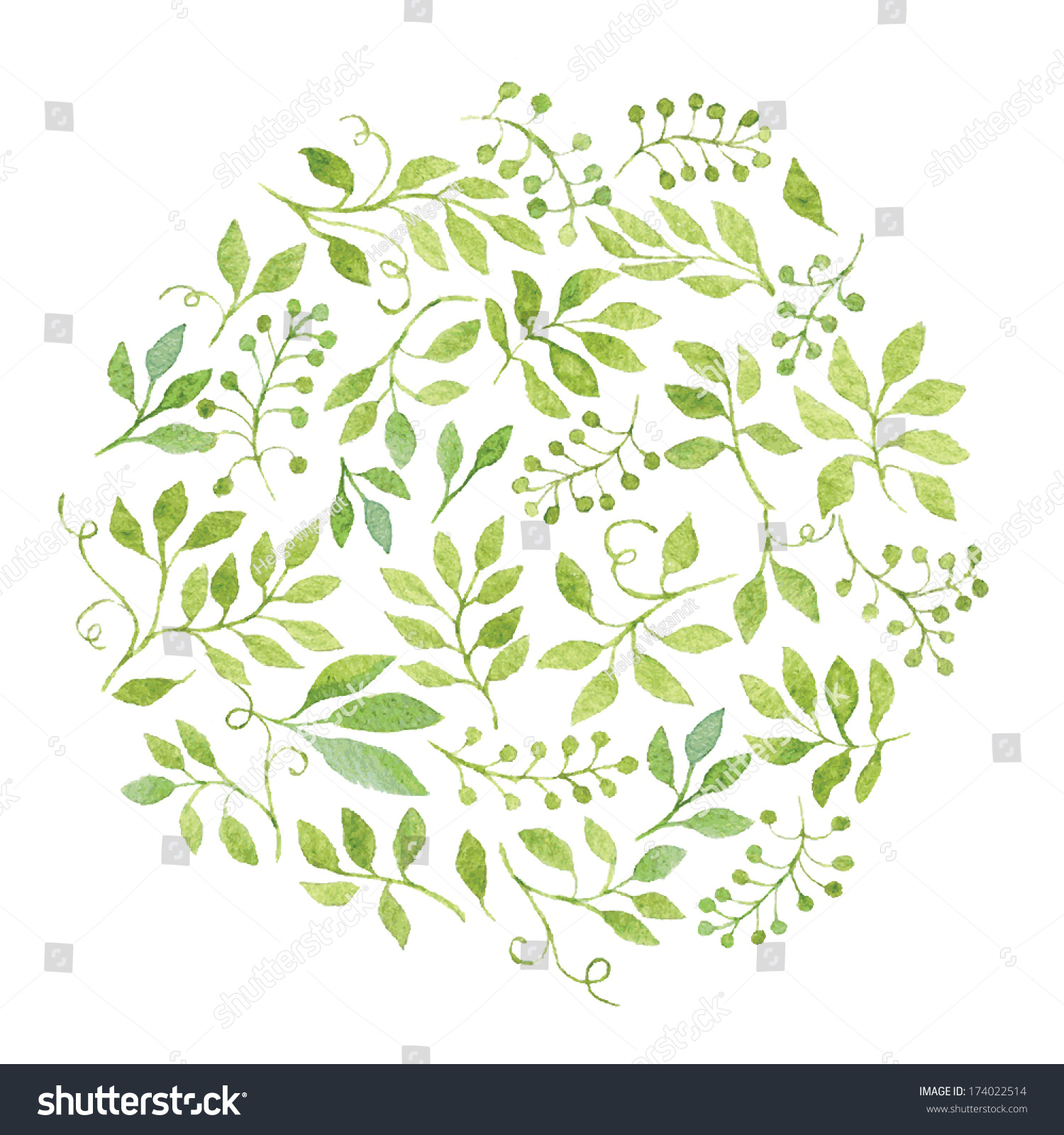 Elegant Floral Background Green Leaves Branches Stock