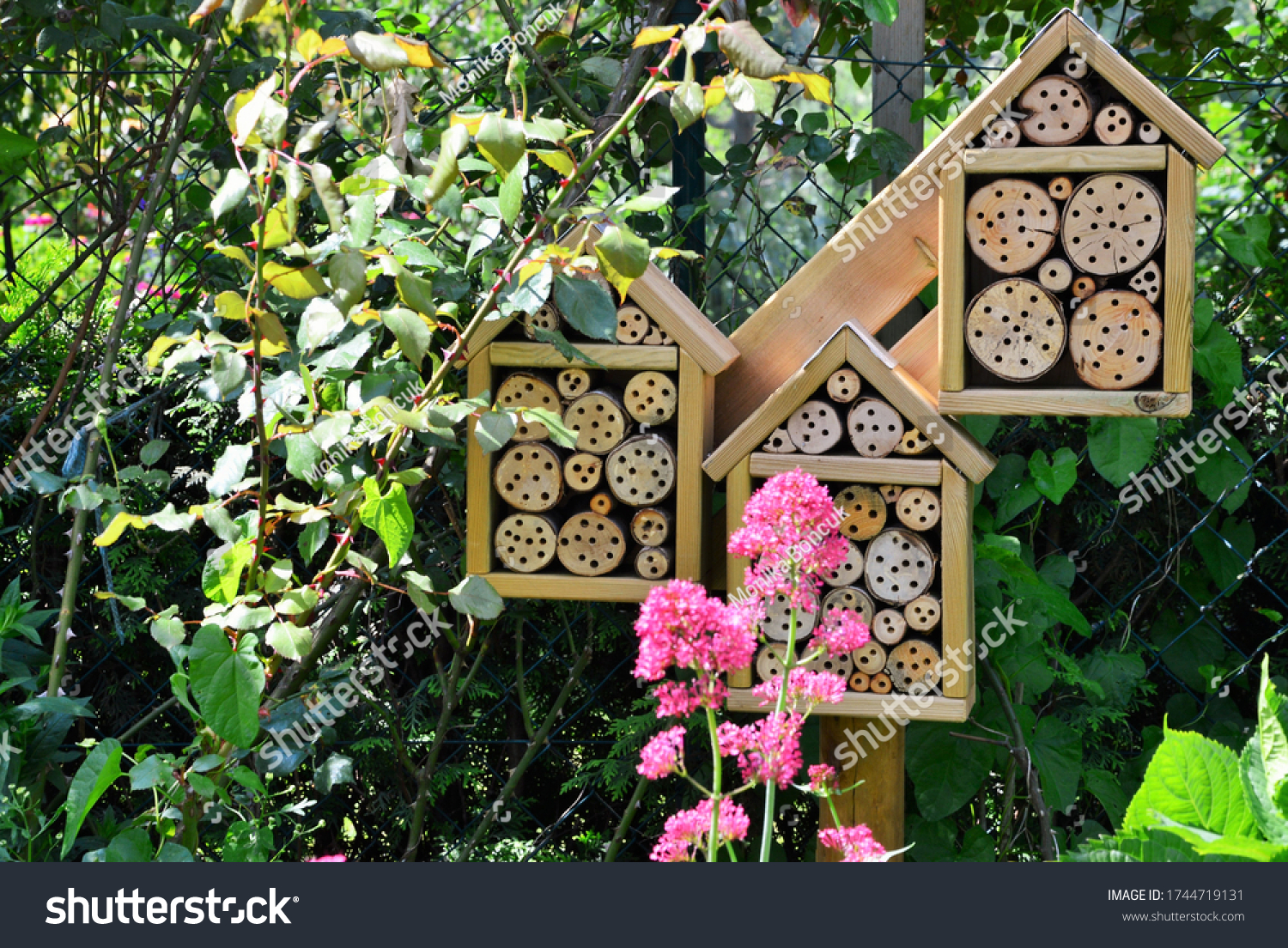 stock-photo-a-garden-with-insect-hotel-1
