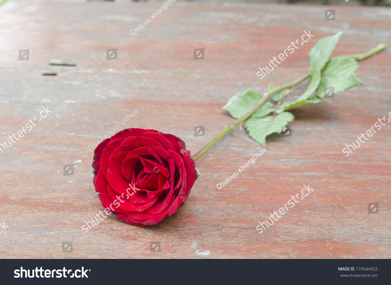 Red rose symbol love valentine season stock photo 174544922 a red rose is a symbol of love in the valentine season buycottarizona
