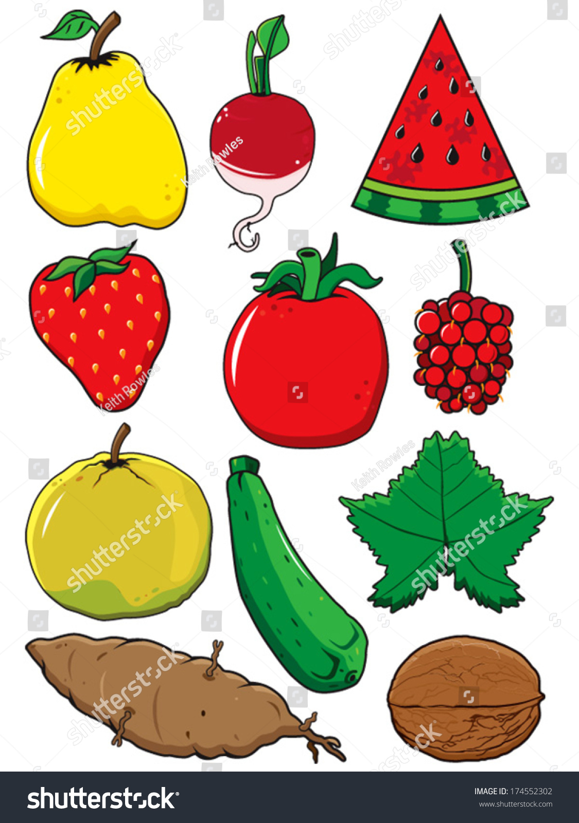 fresh fruit and vegetable vectors starting with letters q through to z including watermelon slice