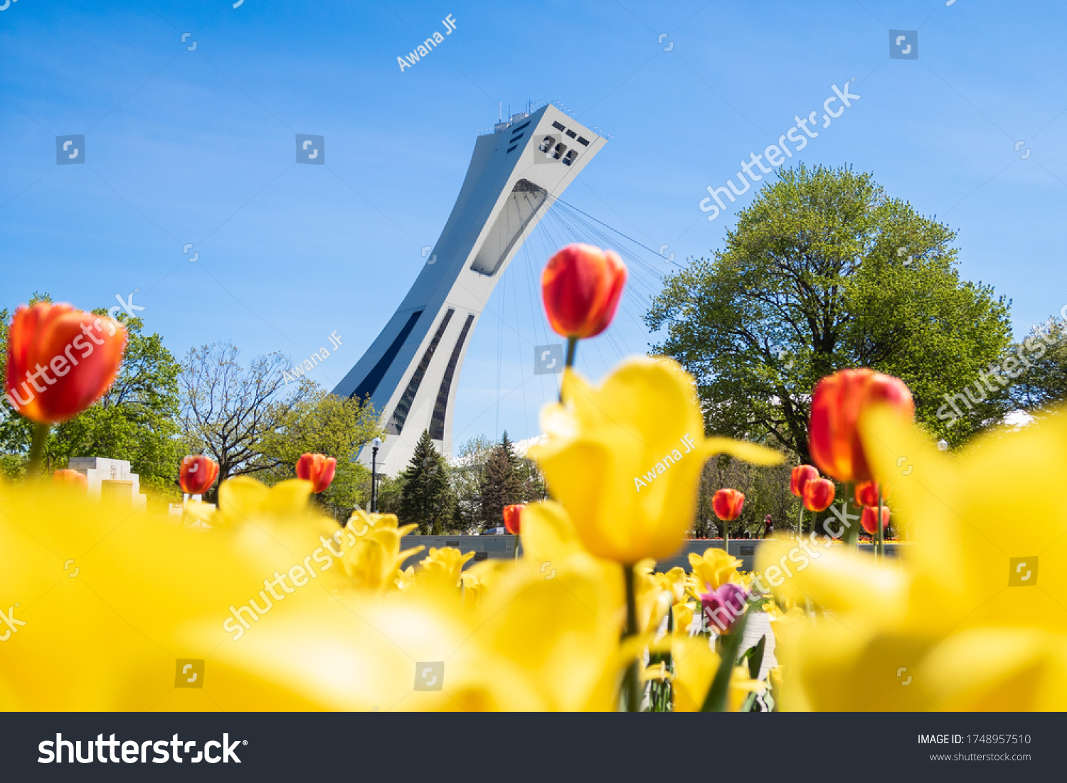 stock-photo-montreal-canada-may-view-of-