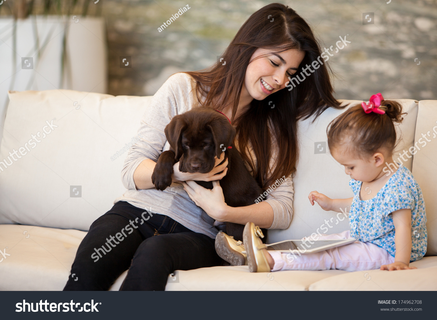 pretty young babysitter looking after puppy stock photo