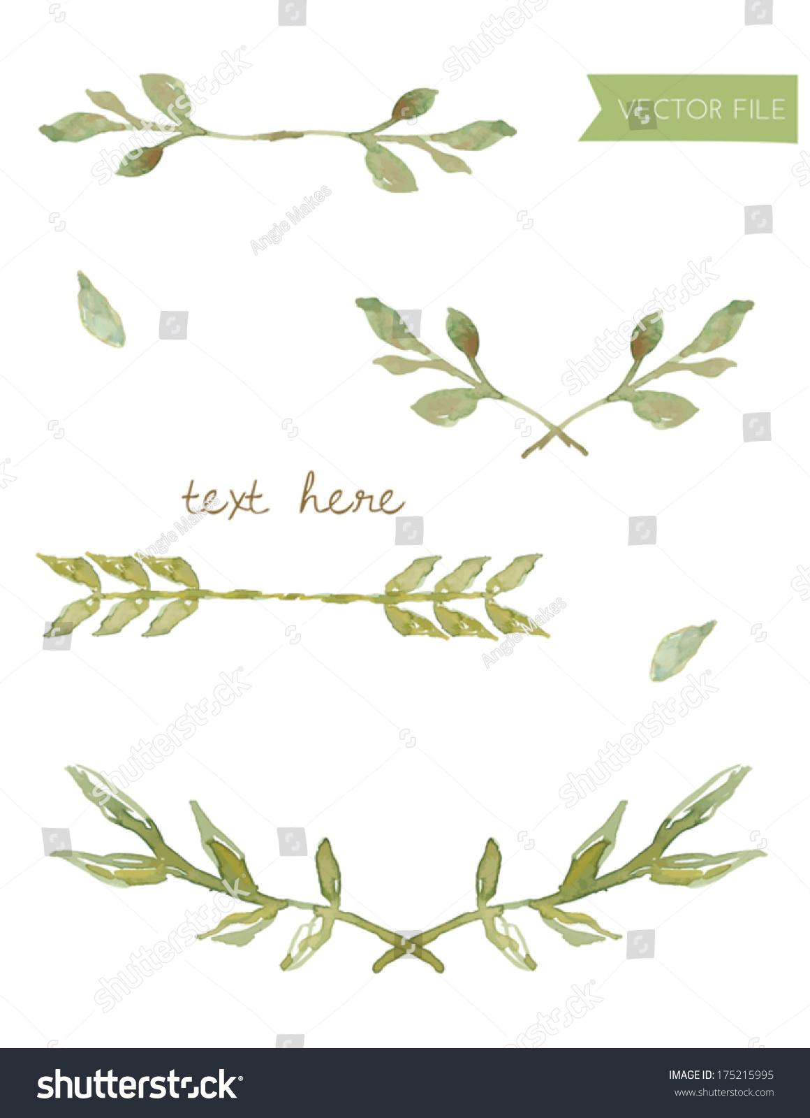 Vector watercolor laurels leaves watercolor branches stock for Watercolor greenery