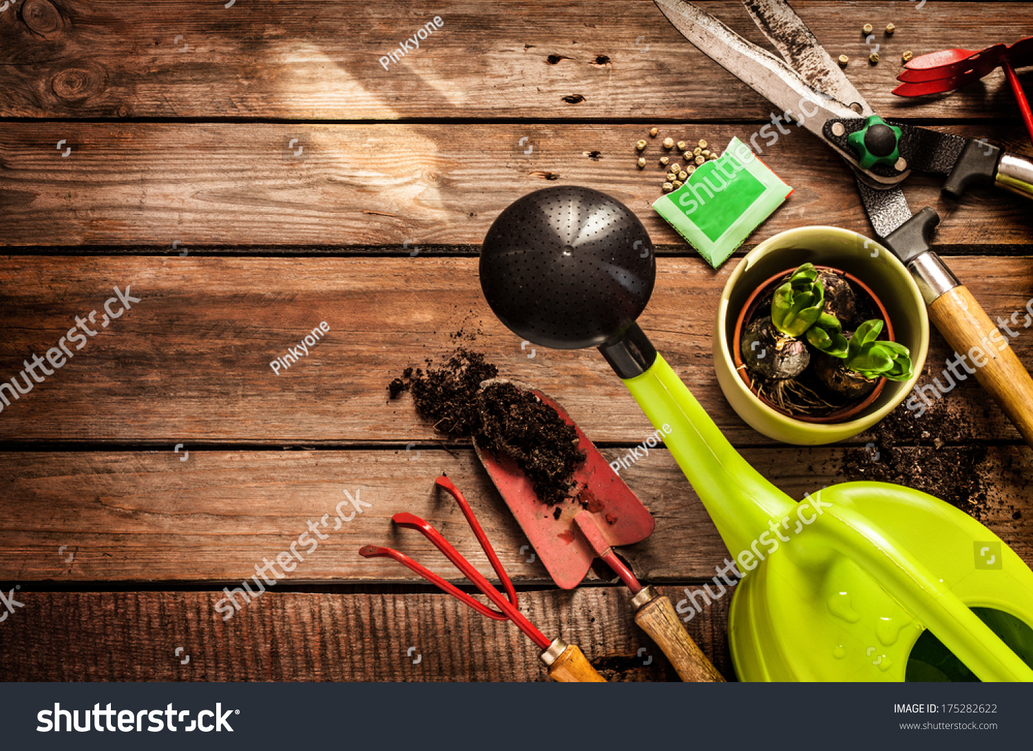 Gardening tools watering can seeds plants stock photo for Gardening tools watering