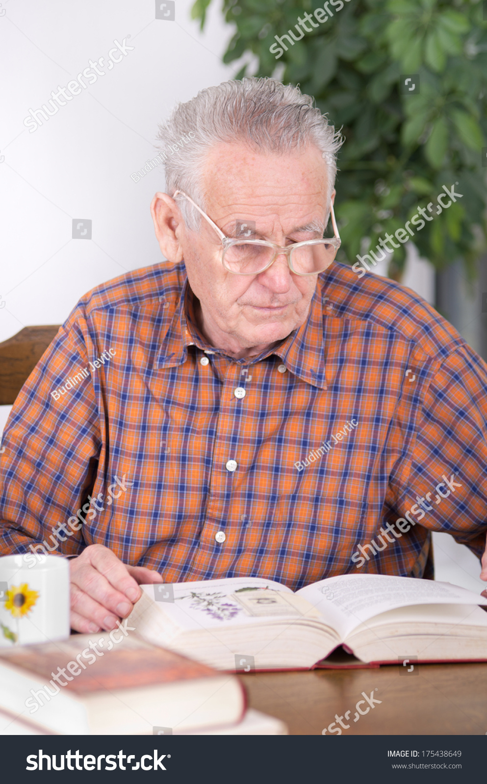 Old Man Reading Glasses Reading Book Stock Photo (Edit Now) 175438649