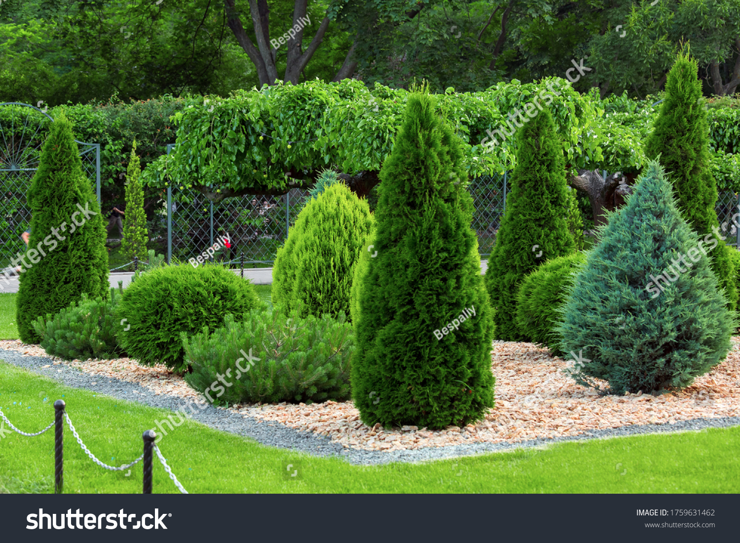 Landscaping of a backyard garden with evergreen conifers and thuja mulched by yellow stone in a summer park with decorative landscape design, nobody. #1759631462