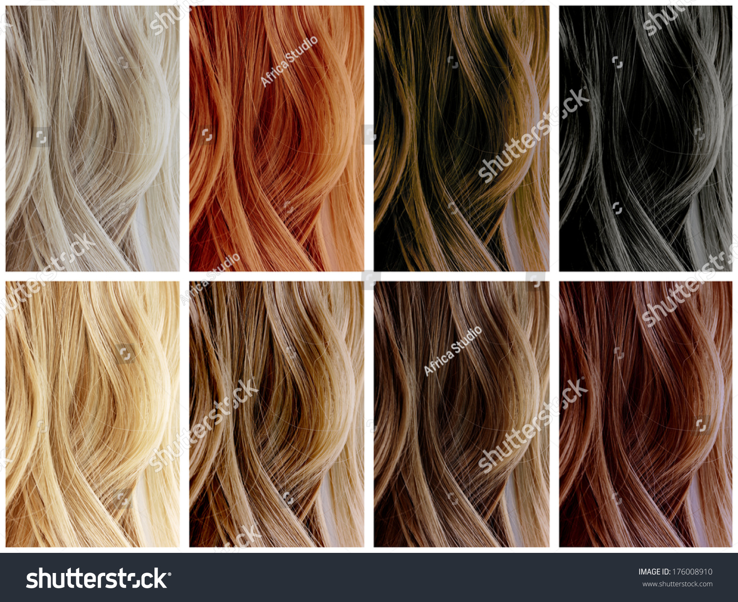 Hair Color Samples Stock Photo 176008910 Shutterstock