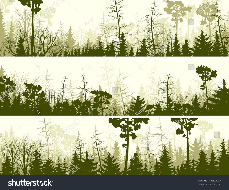 set vector horizontal banners coniferous treetops stock vector