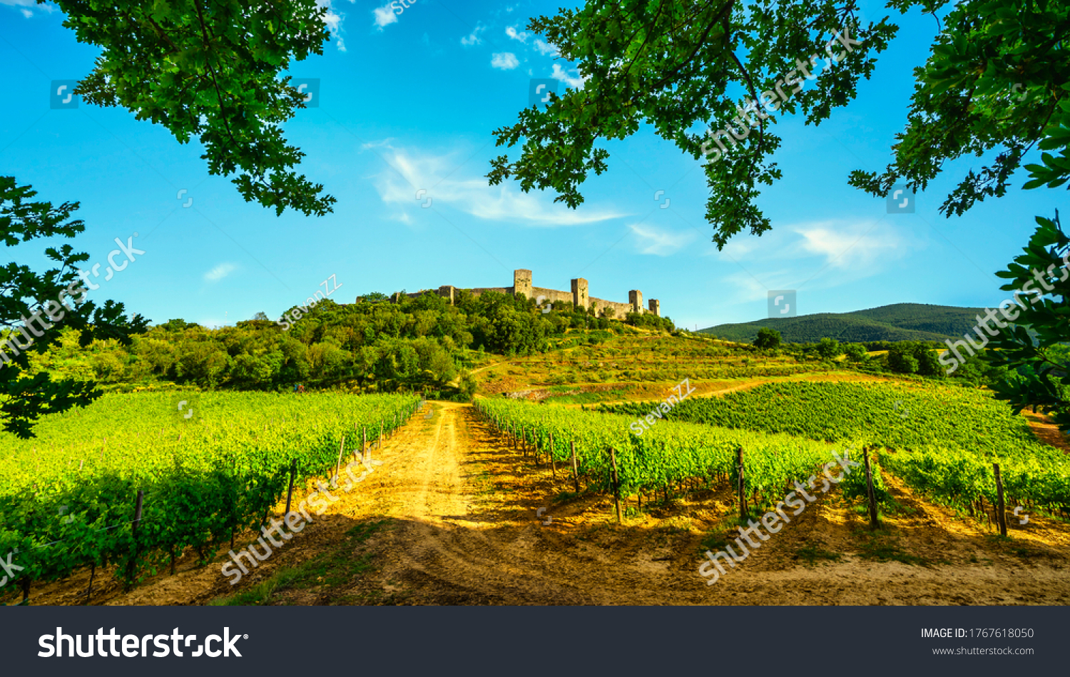 Monteriggioni medieval fortified village and vineyards, route of the via francigena, Siena, Tuscany. Italy Europe. #1767618050