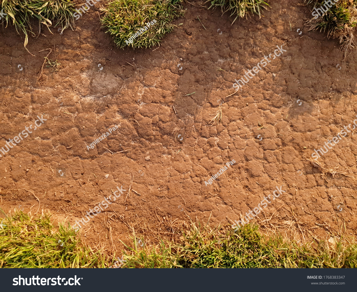 Top view of the soil path on sunny day. Dry cracked ground with dry grass on the top and bottom. Background. Texture. Graphics resources.
