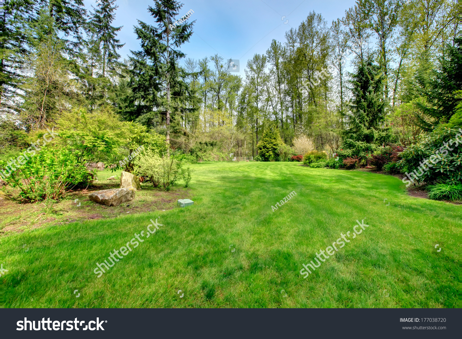 royalty free spring countryside backyard with green u2026 177038720