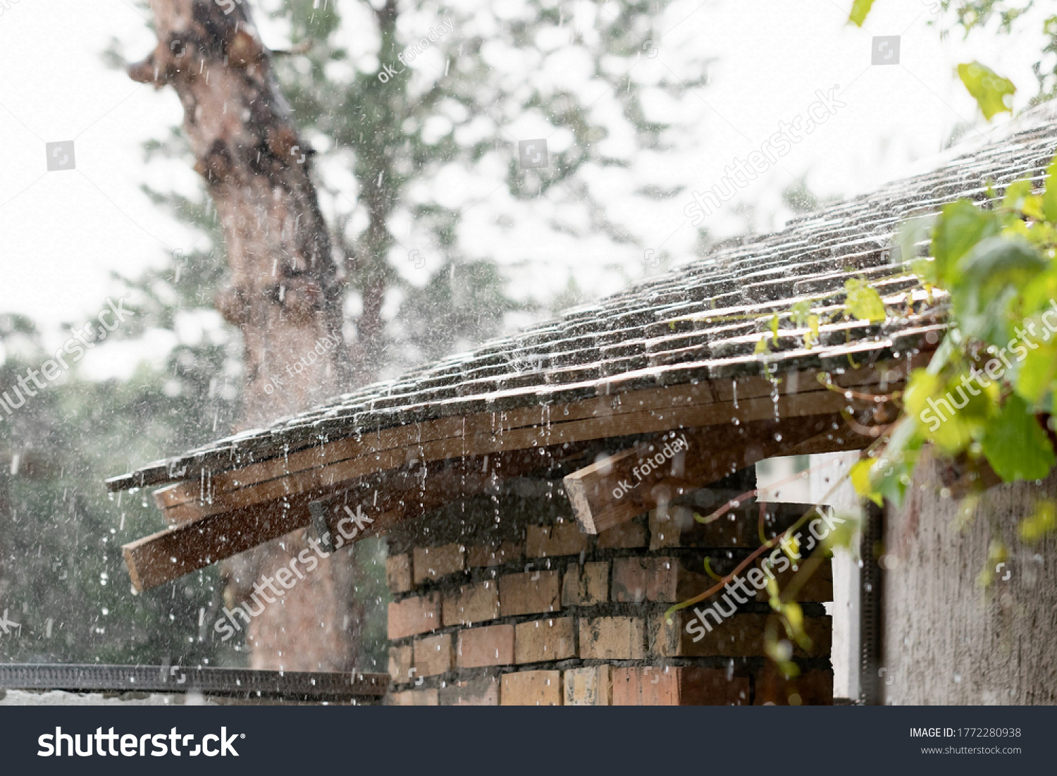 stock-photo-heavy-rain-raindrops-run-fro