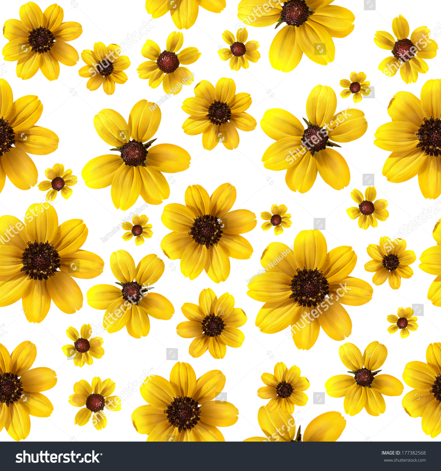Yellow Flowers On White Background Seamless Stock Illustration