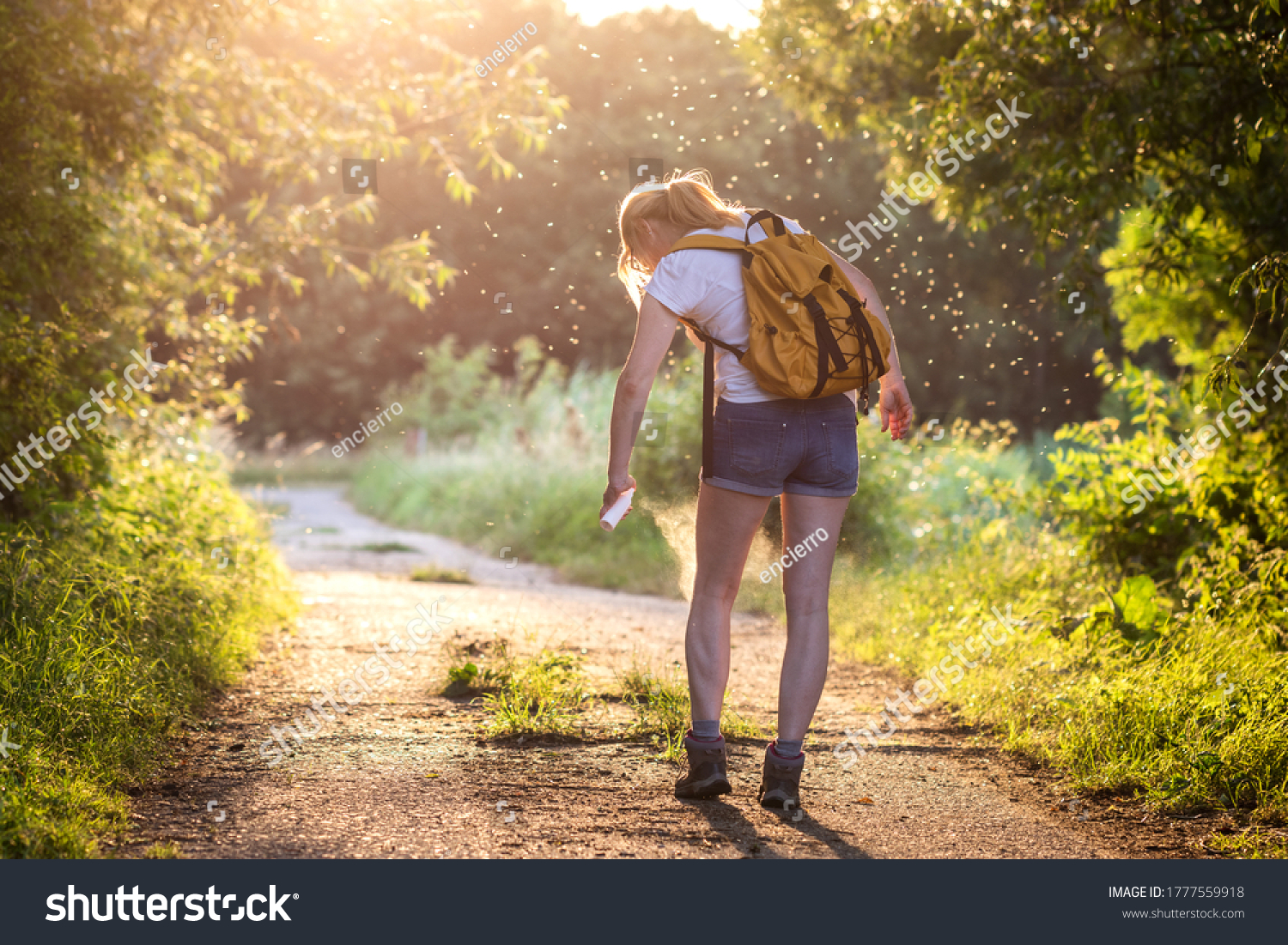 Woman applying insect repellent against mosquito and tick on her leg during hike in nature. Skin protection against insect bite #1777559918