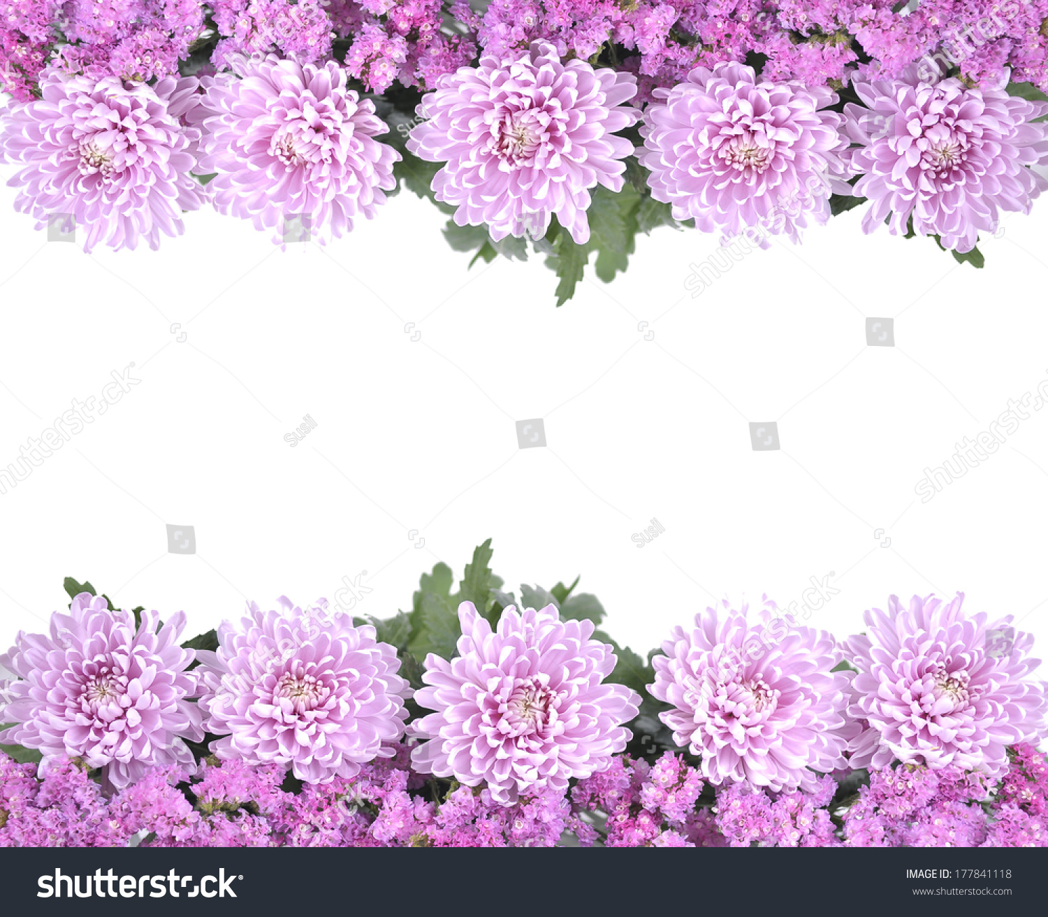 Pretty Frame Border Pink Spring Summer Stock Photo Edit Now
