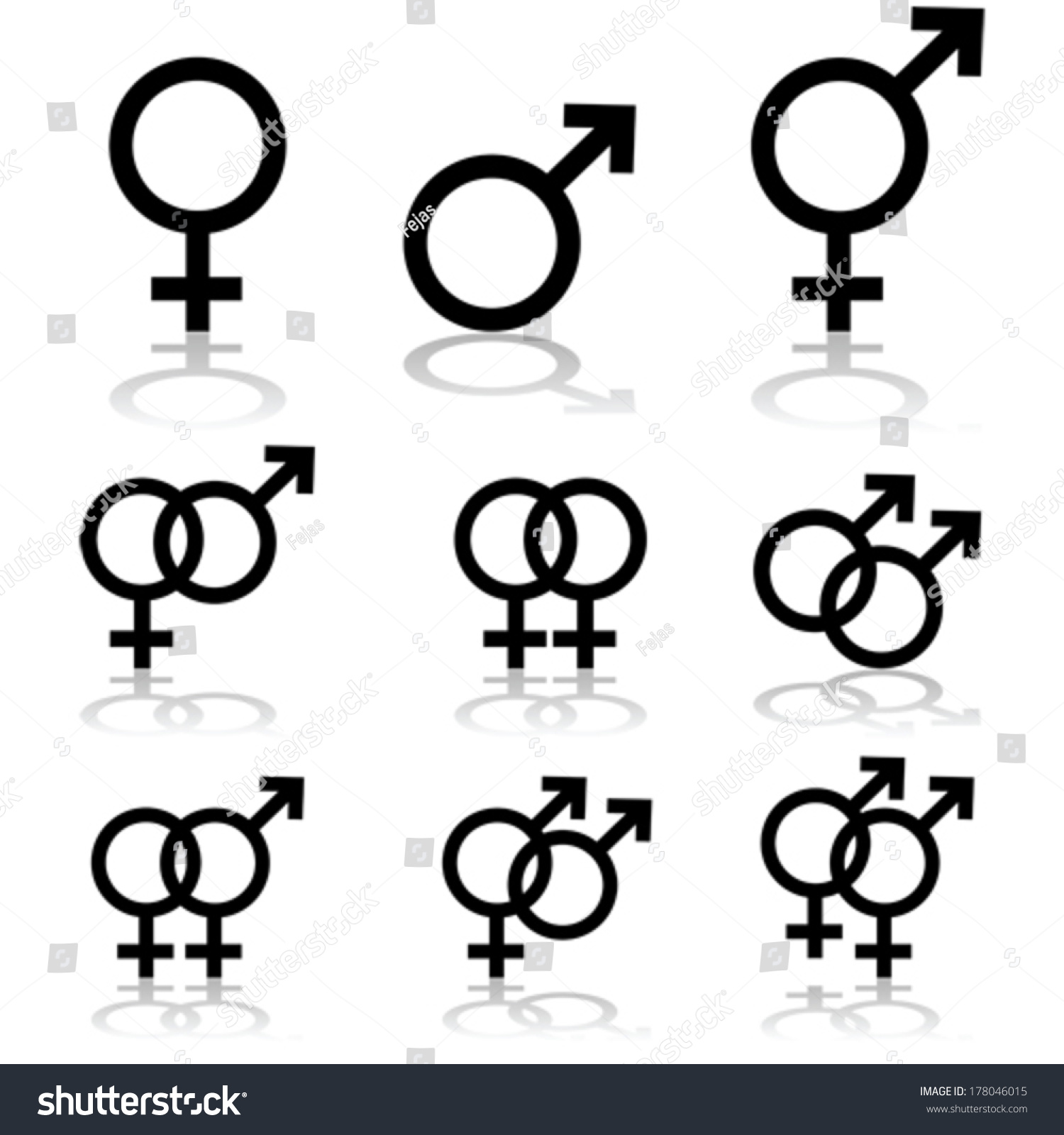 gay porn chuck dirocco
