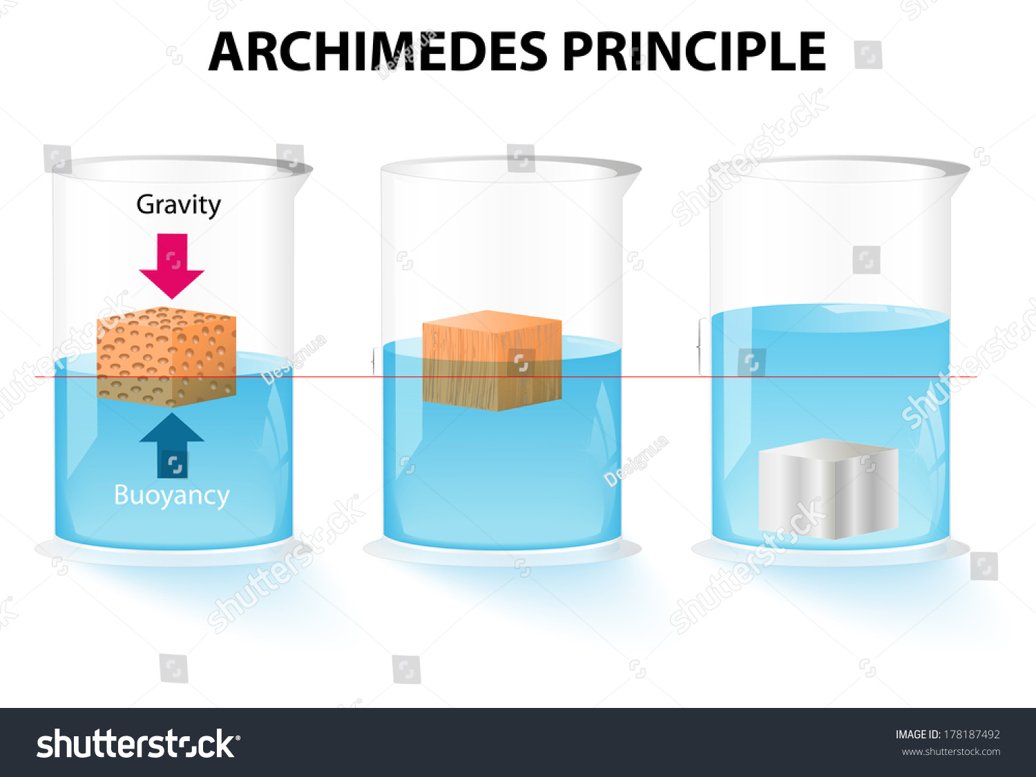 buoyancy and object How does an object's buoyancy change from fresh water to salt water why is an object more buoyant in freshwater vs saltwater.