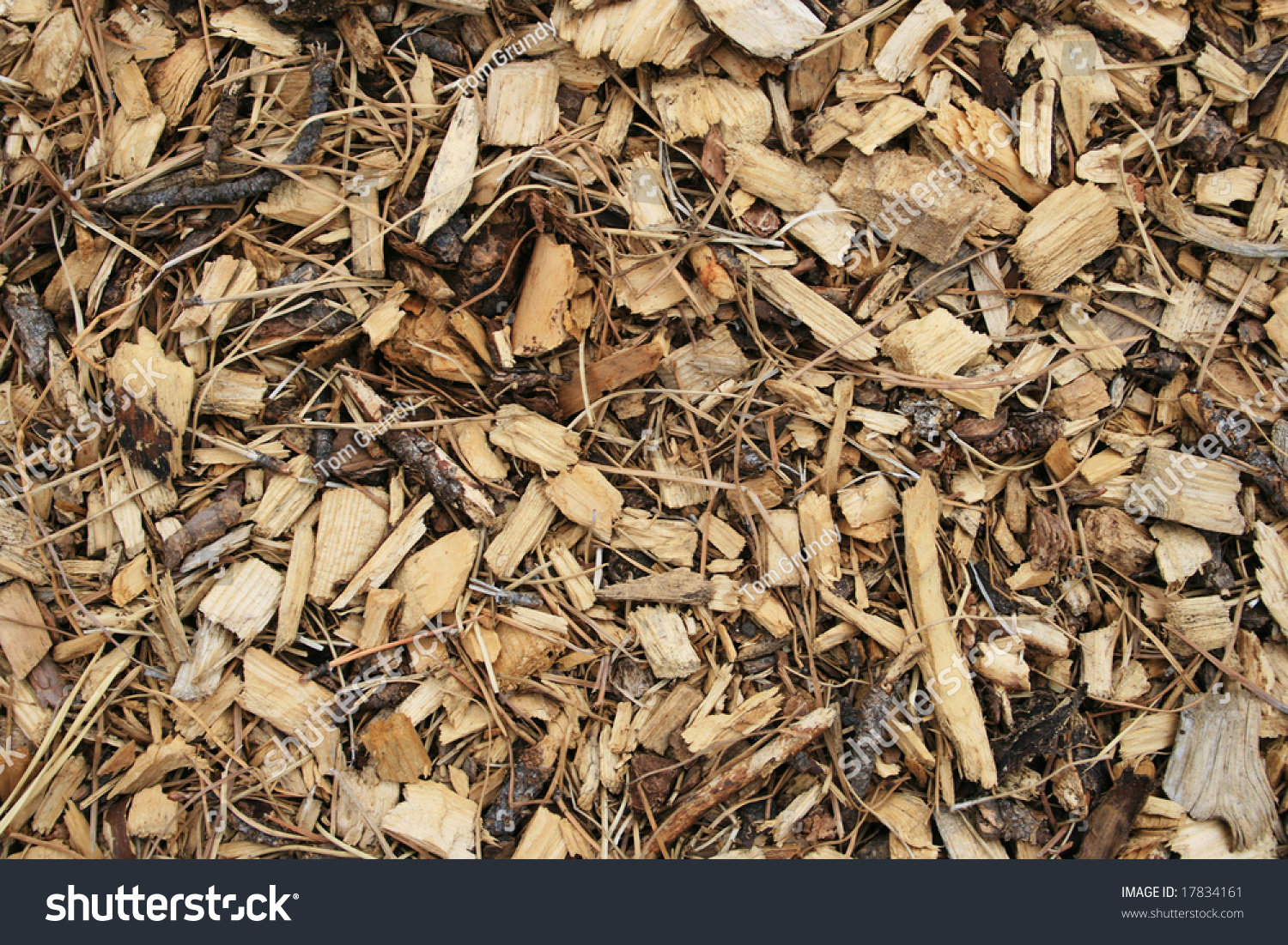 Wood chip and pine needle mulch background stock photo