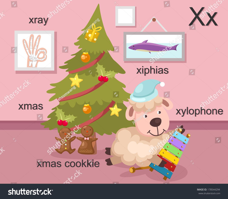 Alphabet X Letterxrayxmasxmas Cookkiexylophonexiphias Vector Stock ...
