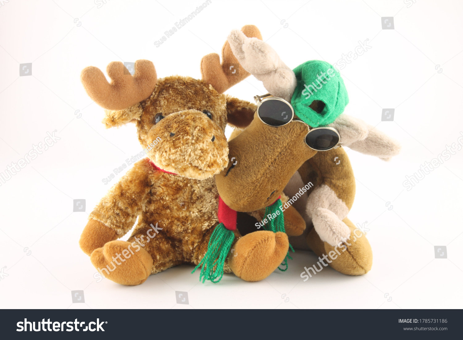 stock-photo-two-soft-toy-moose-one-weari