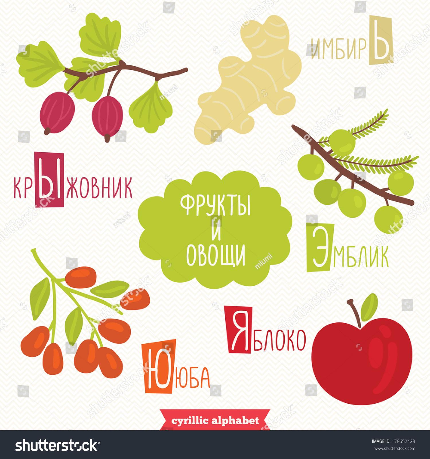 cyrillic alphabet kids fruits vegetables gooseberry stock vector