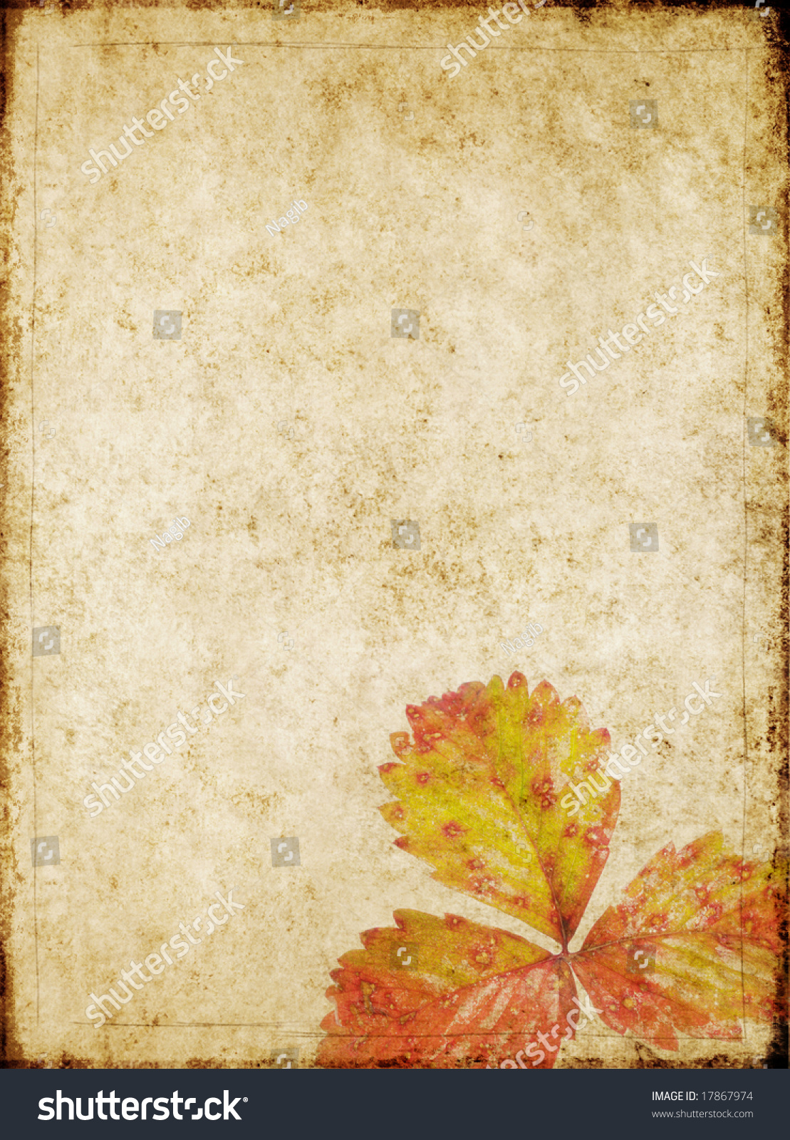 Lovely Brown Background Image With Interesting Texture And ... - photo#27