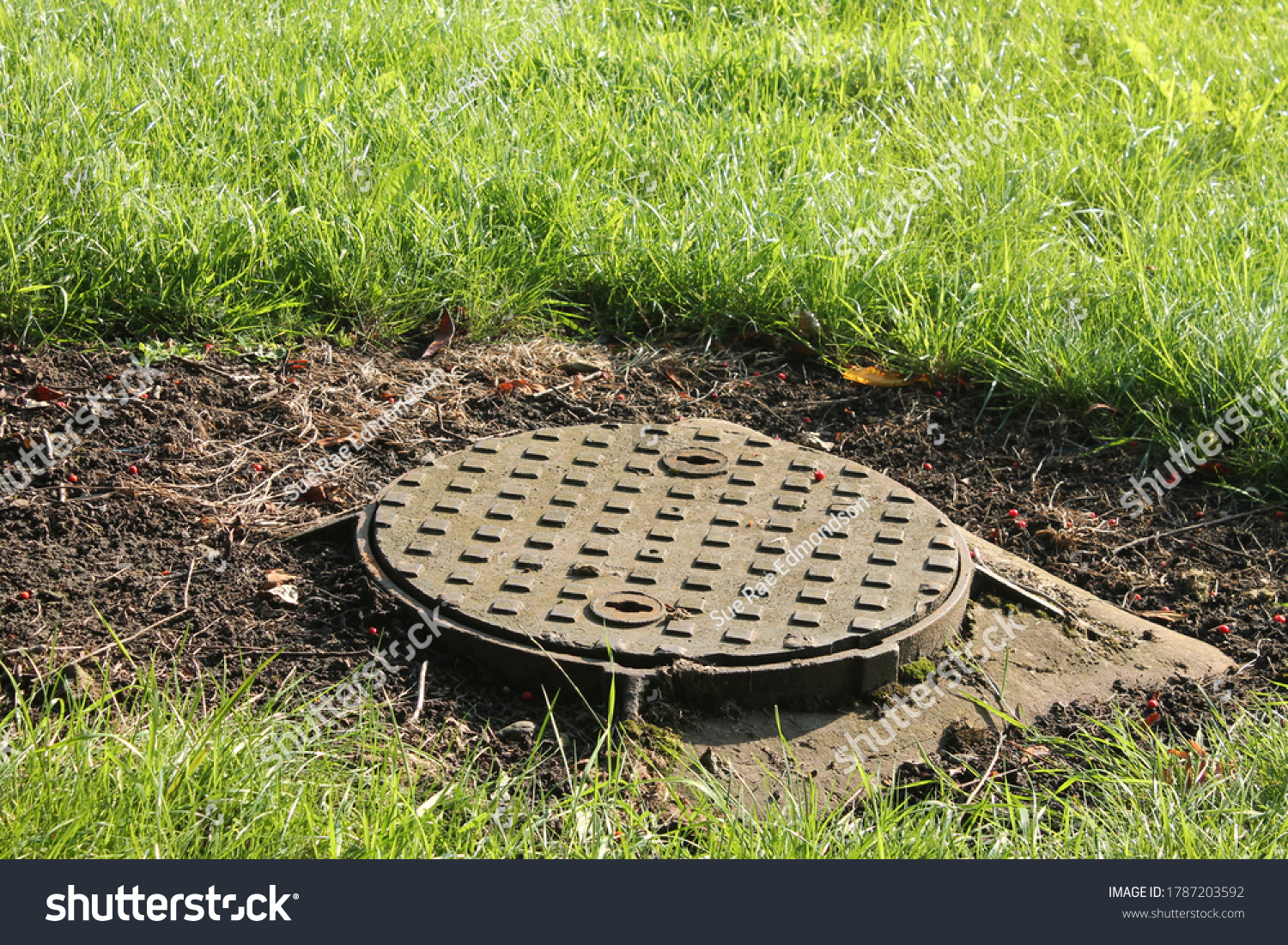 Round metal manhole cover surrounded by grass